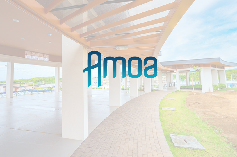 Construction-Update-Amoa